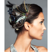 Accessoires pour cheveux (14)